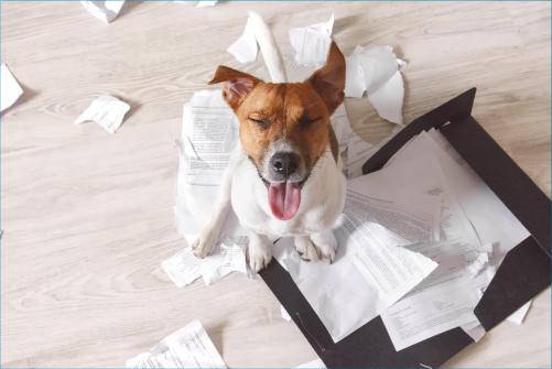 Rechnung-per-E-Mail